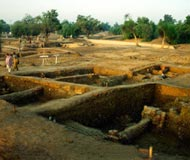 harappa trench